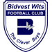 Bidvest Wits Reserves